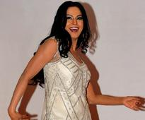 Pakistani actor Veena Malik becomes unlikely poster girl for freedom of expression