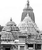 Puri servitors demand withdrawal of cases