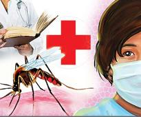 Another woman succumbs to swine flu; toll touches 3