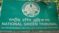 NGT seeks info on MoEF's stop-work order on Polavaram project