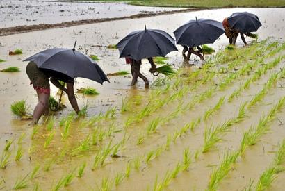 Oppn to move private members' bills on farm loan waiver, remunerative MSP