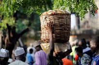 Ghost tomato factory showcase for Nigeria's farming problems