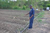 Climate Change Threatens Water and Food Security in Antigua