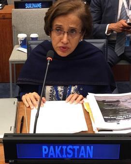 Meet Tehmina Janjua, Pakistan's first woman foreign secretary