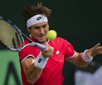 Davis Cup: The 'Shark' Ferrer bites India
