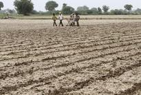 Creating facilities to double farmers income: Jaitley