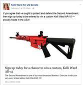 Roberts: Donate to Kelli Ward, win an AR-15
