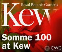 Kew staff on the Somme,...