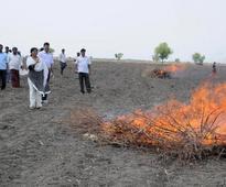 Sanitising Bt cotton fields begins in Raichur district