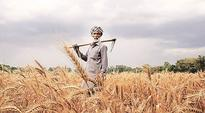 Kharif farmers hit after RBI ban on District Central Cooperative banks over old notes