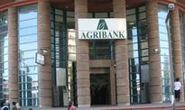 Agribank to leverage on  capitalisation, govt arrears clearance