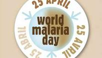 World Malaria Day: Effective steps to prevent Malaria