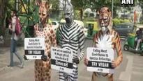 PETA promotes vegan eating