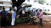 Calicut University staff forgo holiday, clean up campus