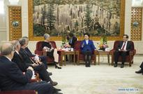 Chinese Vice Premier meets foreign experts in Beijing