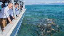 The Great Barrier Reef report the government can't hide from the media