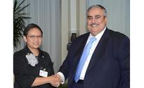 Foreign Minister meets Indonesian counterpart