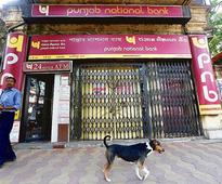 PNB scam: Banks relied on Ind-Ra's rating of Nirav Modi firm to lend money