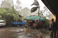 Typhoon Haima rampages N Philippines, at least 8 dead