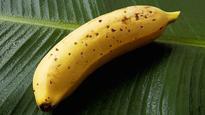 "Japanese Farmers Develop ""Incredible"" Banana with Edible Skin"