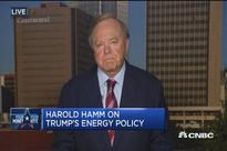 Trump would get US to energy independence in about 6 years: Advisor Harold Hamm