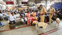 Narco agency to get 2 sniffer dogs on board