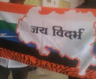 Activists hoist 'Vidarbha flag' in Nagpur to intensify movement