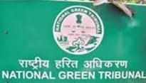NGT raises questions over 'Gangotri four lane road widening project'
