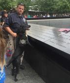 TSA explosives detection canine named after 9/11 fallen firefighter retires from service