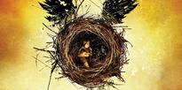Will Harry Potter And The Cursed Child Be Made Into A Movie? Here's What We Know