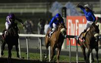 Dubai World Cup 2013 'live': Countdown begins... Defending champion Monterosso reported being lame