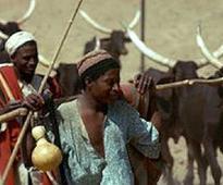 Fresh hostilities between Agatu, Fulani claim seven lives