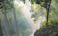 Uttarakhand: Tucked deep in Jim Corbett, only way to reach rebel MLAs is chopper, horseback