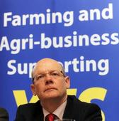 IFA begins search for new director general