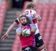 Rugby Pumas fail to match Currie Cup champs Lions