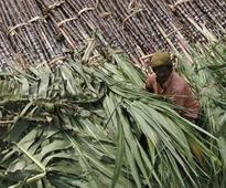 Sugar surges to four-year high as supply concerns mount