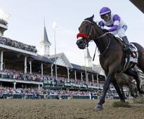 Preakness 2016: Derby winner Nyquist ready for another