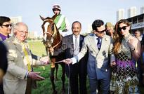 Indian derby: Trainer S Padmanabhan knew Desert God would win