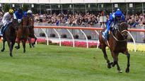 Winx named world's best horse on turf