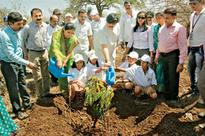 MNGL in association with SSF organises tree plantation drive