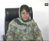Vajpayee policy best for maintaining ceasefire, J&K not ready for war: PDP