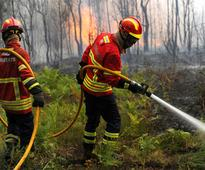 Portugal blaze: Fresh forest fires break out near Serta month after wildfires claimed 64 lives