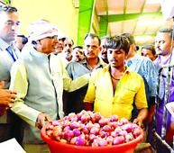 Every single onion to be procured from farmers