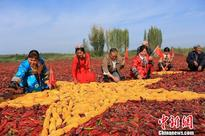 Xinjiang residents make 'crop flag' to celebrate National Day