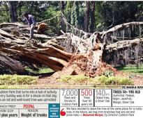 I-T 'Raid' on Karnatka Congress Leader's Home