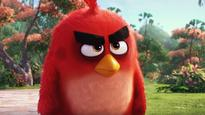 Film Review: The Angry Birds Movie