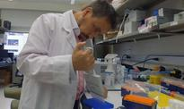 Research could lead to blood test to detect Creutzfeldt-Jakob disease