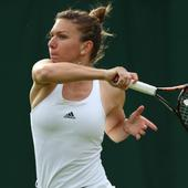Simona Halep could pull out of Rio because of Zika fears