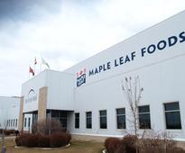 Maple Leaf Foods reports Q1 profit
