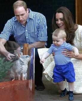 The best Will and Kate moments